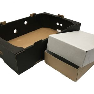 Produce Trays & Boxes